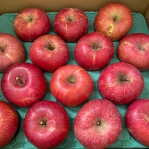りんごが届きました