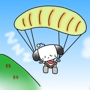 ロボわんこ パラグライダーで充電切れ  着地は大丈夫?