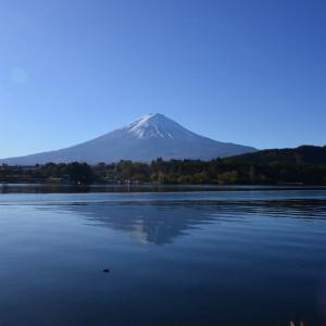 河口湖の紅葉と富士山(2019)②