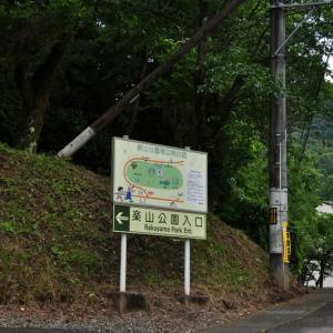 楽山公園の紫陽花~都留市①