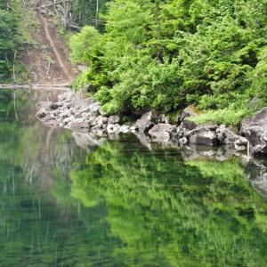 双子池~亀甲池 (北八ヶ岳)④ 双子池(回想)