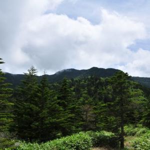 双子池~亀甲池 (北八ヶ岳)⑧ 終(回想)