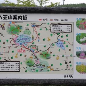 入笠湿原(回想)