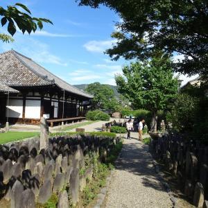 バスツアーで奈良へ 元興寺の桔梗 ♪