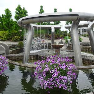水生植物公園みずの森   エントランス の花  ♪