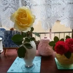 夏の薔薇   ♪