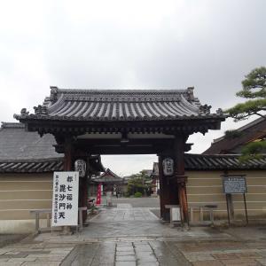 京都 東寺 その3  陽光桜  ♪