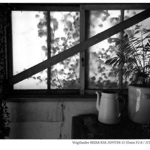 File,2134 【Glass~窓の先】Voigtländer BESSA R3A / JCH STREET PAN400