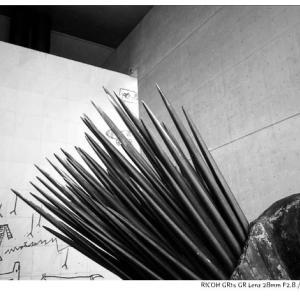 File,1966 【Old memory ~古い記憶】 RICOH GR1s / ILFORD XP2 400