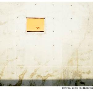 File,1971 【Art work ~島の壁】 FUJIFILM X100s