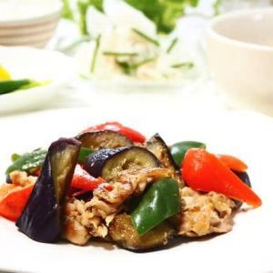 ごはんがすすむ☆なすと豚肉のみそ炒め&夏野菜のおひたし☆