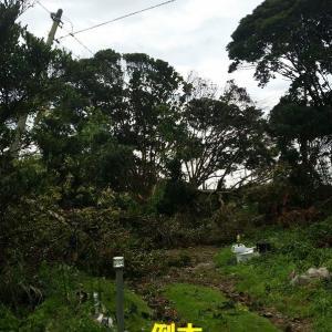停電91時間の記録 2019.9.9未明の台風15号通過