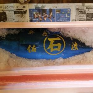 天然寒ブリ 能登産 9.9kg