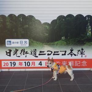 ピースと日光江戸村秋のワンニャン祭り-生類憐みの令と定番キャンプ