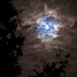 十五夜満月