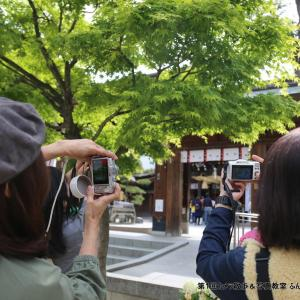 カメラ散歩&写真教室