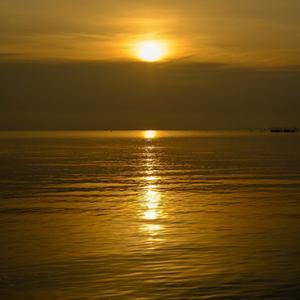 琵琶湖、この一週間の傾向@12月6日版