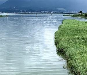 7/16 午前9時の野洲川、濁りがとれてきた