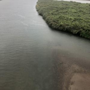 10時30分、野洲川は比較的穏やか