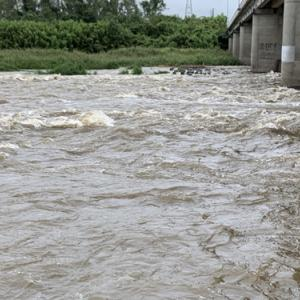 14時40分、野洲川中流域は濁流