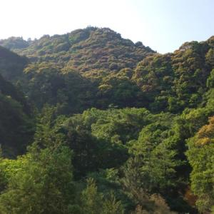 弘法大師さま、香川照之さん、誕生日、親、ありがとうございます。