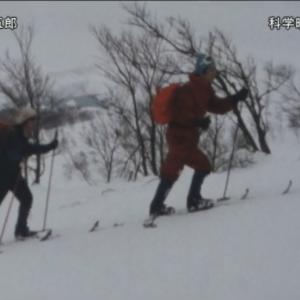 京大山岳隊のスキーの模様描いた8mm作品