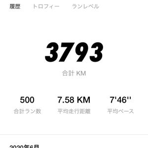 今日は10km
