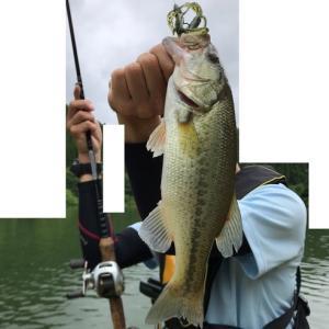 強雨の後の釣り