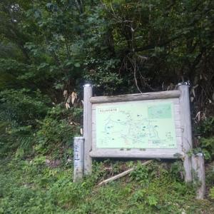 医王山登山(鳶岩-白兀山-蛇尾山)