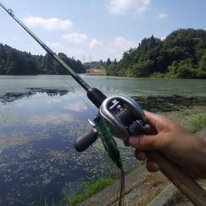 年1の特別な釣り