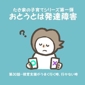 【おとうとは発達障害】#30 視覚支援がうまくいかない原因とは?