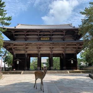 古の都 奈良を散策