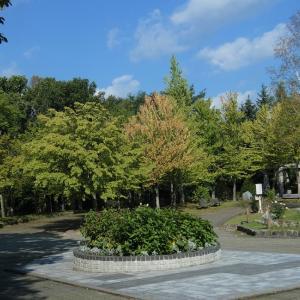 神楽岡公園にて