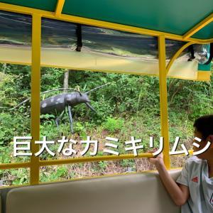 2019年9月 福井 かつやま恐竜の森 その2