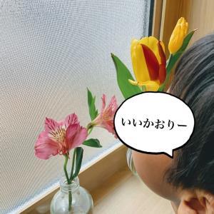 「神様の定食屋2」中村颯希