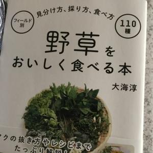 大海淳 『野草をおいしく食べる本』