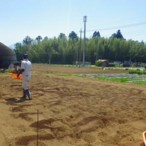 令和2年度「すがたをかえる大豆づくり教室」土づくり・種まき【前編】