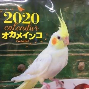11月12日 カレンダー