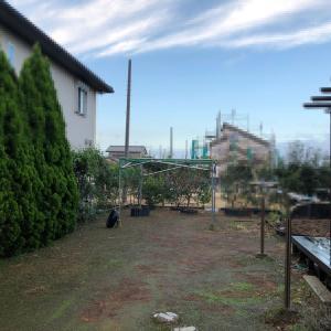 我が家の庭にやってきた ~突然の訪問者~