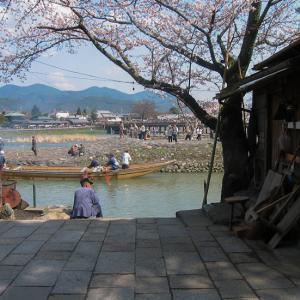 桜画像 2003年(1)