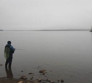 朱鞠内湖 ダメでした。