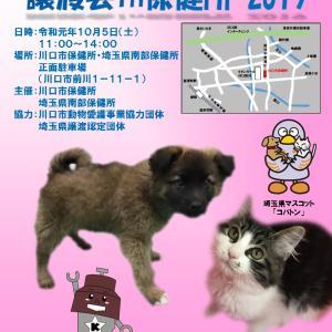"""""""保護犬・保護猫譲渡会in 保健所2019のお知らせ"""""""