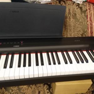 ピアノがきた!