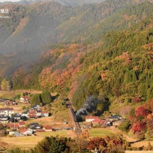 秋に染まる ~ 津和野 町はずれ