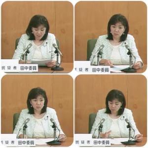 決算特別委員会(区民生活領域)の質問が終わりました。