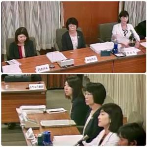 決算特別委員会、最終日は「台風19号関連」の質疑が多かったです