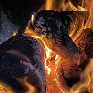 炎を楽しむ