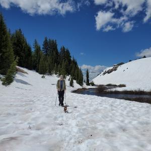 まだ雪があるんだよーオレゴンでハイキング
