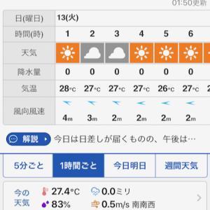 夏休みの琵琶湖夜釣り Day-2 19-08-13/琵琶湖-おかっぱり