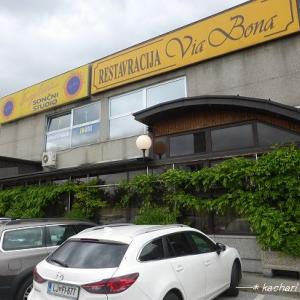 スロヴェニアの首都リュブリャナでディナー★クロアチア&スロヴェニア旅行